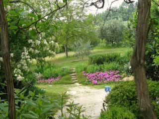 Uno scorcio del nostro ampio giardino
