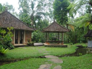 prana dewi mountain resort, Penebel