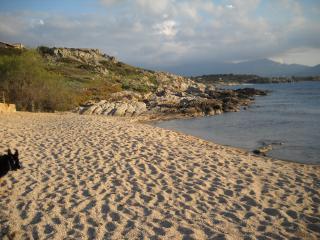 Corsica baia di Calvi  200 mt dal mare