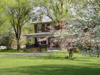 Charming Guest house 3 miles from Lexington!