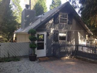 Modern-Rustic Mountain Cabin, Crestline