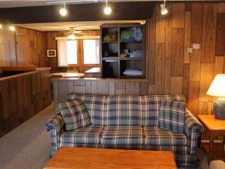 Located at Base of Powderhorn Mtn in the Western Upper Peninsula, A Simple Trailside Condo with a Shared Hot Tub & Allows Dogs, Bessemer