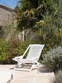 Transat au bord de la piscine et de l'olivier
