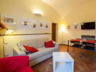 FILIPPO APARTMENT FLORENCE  CENTER  2+2+1