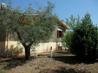 la casa nel verde, Canale Monterano