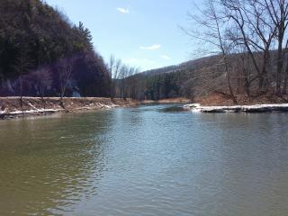 Looking downstream on the Pine into the Pennsylvania Grand Canyon. Rail Trail on left.