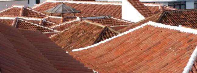 Mar de tejados visto desde nuestra estupenda terraza.
