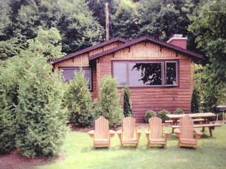 Charming Waterfront Adirondack Cabin - Bear, Saranac Lake