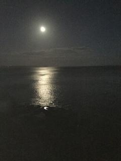 The Cleave (out the gate, turn right) full moon, spring tide