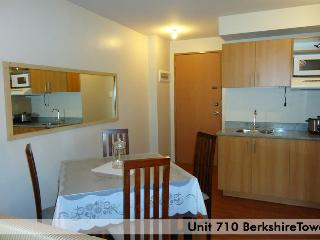 Affordable price Fully Furnished Condo Rentals