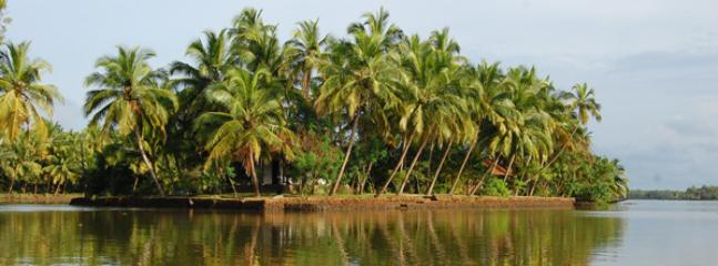 Coconut Island  An exclusive private island in the backwaters of Thrissur, Kerala