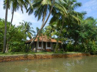Coconut Island, Guruvayur, Thrissur, Kerala, India