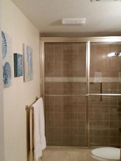 Walk in shower in the master bath.