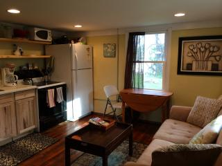 Cozy Apt in N. Avl- Close to all!