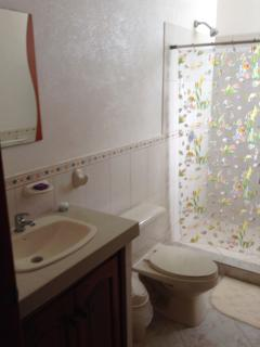 One of the full bathrooms w. shower (sorry for the poor pic quality).