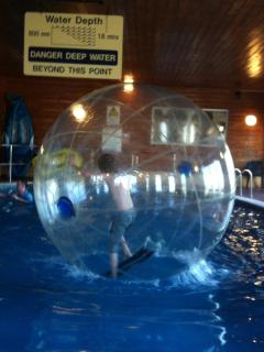 Water walkers in the pool --- this is a free activity --- book on arrival to ensure you get a place