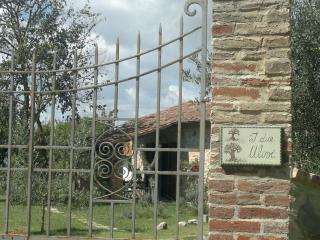 I DUE ULIVI - LA MAGNOLIA, Castiglione del Lago