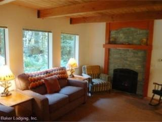 CR102qMapleFalls - Silver Lake #67 Very Private 2-Story Cabin, Maple Falls