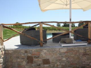 Terranuova Bracciolini 67563, Cicogna