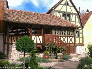 Lucky Dragon***** historical house with terrace, Riquewihr