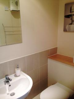 The ensuite bathroom is well lit with a large mirror and large shower cubicle.