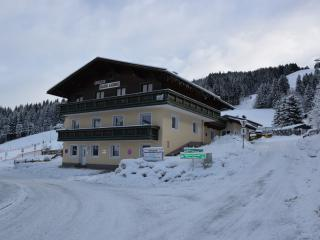 Brownies Holiday Apartments in Wagrain in the Alps