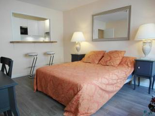 Central, modern Paris studio apartment with free WiFi – a short walk from the Eiffel Tower!