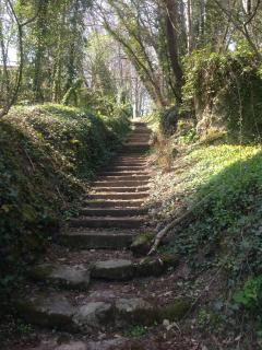 Woodland steps to local church