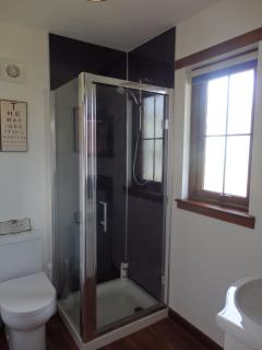 Downstairs shower room with toilet and sink