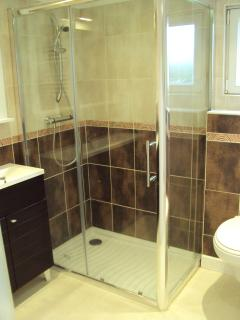The stylish double shower room