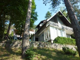 Robinson style house,near SKI resorte,vacation in forest on lake