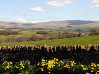 The rolling Pennines across the fields
