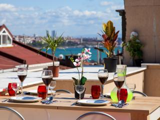3 Bed Rooms & Private Terracce & Jaccuzi, Estambul