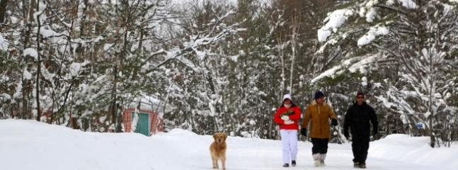 Walk our cottage roads this winter at Muskoka Soul