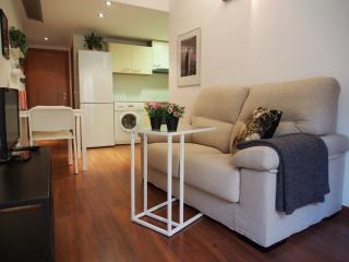 Cozy 1 bedroom apartment Jewish Quarter Girona