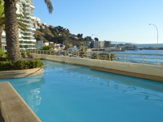 Great Apartment Viña del Mar Chile Valaparaiso!!