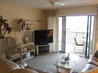 Ocean View Condo at Sea Place, Flat Screens, WIFI, 2 Balcony's/Pools, Saint Augustine