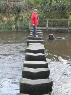 Stepping Stones to the pub!!