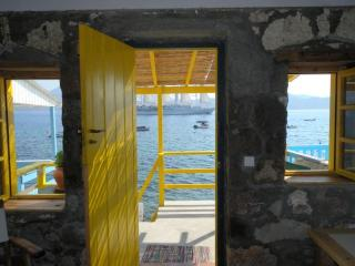 The Yellow Boat House, Klima