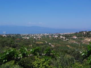 Villa Regina, Egina