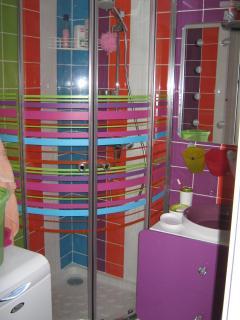 SDB  avec douche,lavabo et lave-linge