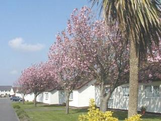 No 1 The Bungalow - by Gower's best beaches
