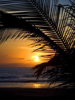 Paradise Awaits....