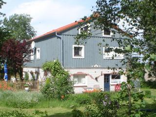 Wohnung Marschbick im 'WeidenWind Cottage', Westerhever