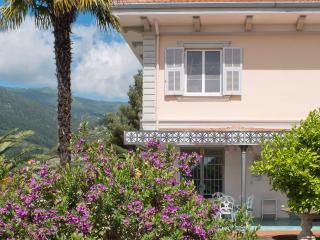 Villa d'Artisti // APARTAMENTO LIMONE