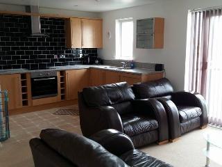 Golwg y Llyn - Lake View Apartment, Llanelli