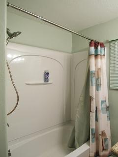Shower in main bath