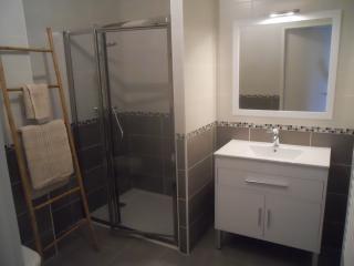 Salle d eau avec douche spacieuse