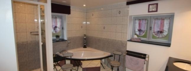 grande salle de bain et douche au rez-de-chaussée
