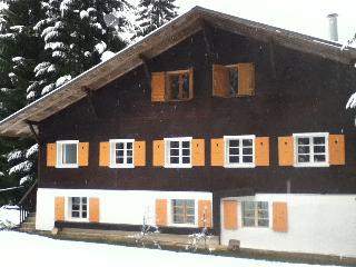 Chalet Alpe Massif